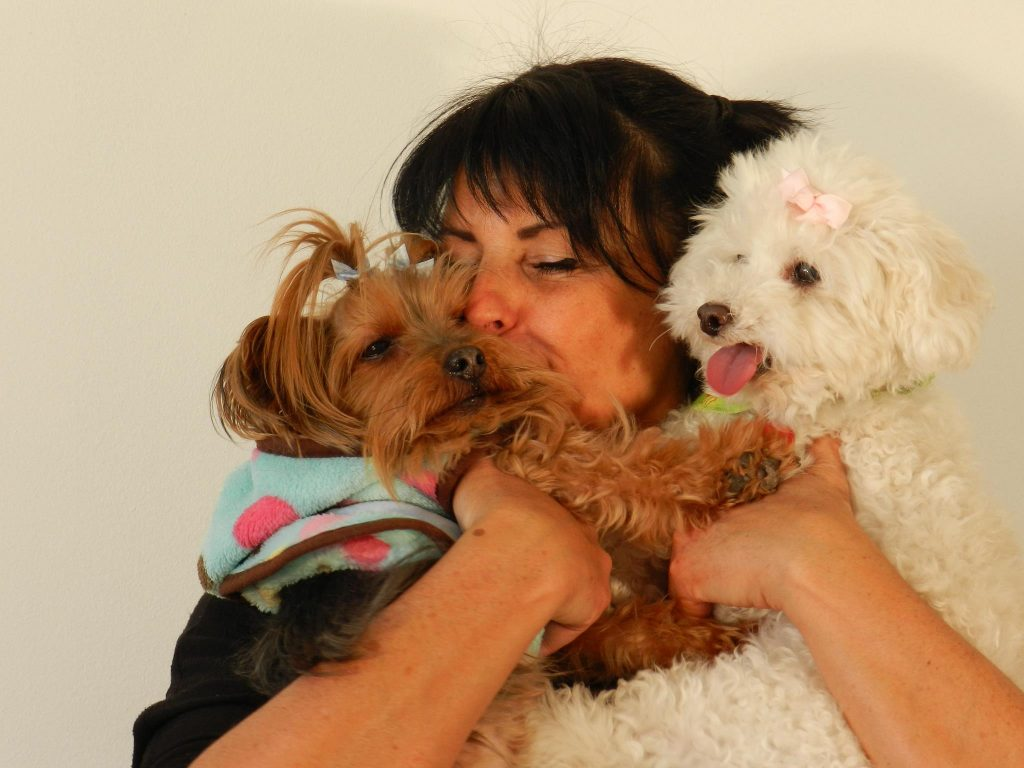 Pension et garderie familiale sans cage pour chien