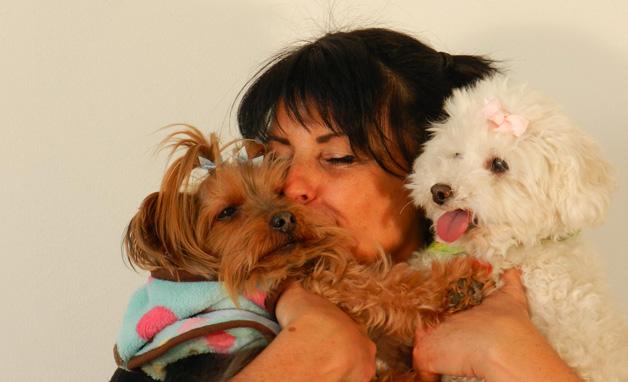 Pension familiale sans cage pour chiens